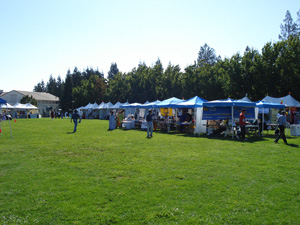 The festival was set in a field and filled with booths from many different groups.
